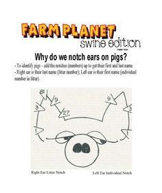 Here is another fun way to present ear notching to the public. It is one of our Educational posters. Ag Science, Animal Science, Science Lessons, Fun Facts About Animals, Animal Facts, Livestock Judging, Pig Ears, School Lessons, School Classroom