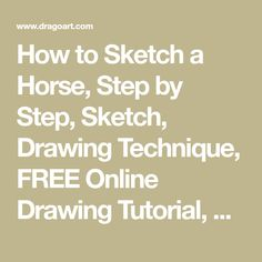 How To Draw A Scottie, Scottish Terrier by Dawn Husky Drawing, Face Sketch, Sketch Drawing, Realistic Rose, Sketches Tutorial, Collie Puppies, Online Drawing, Drawing Techniques, Drawing Tutorials