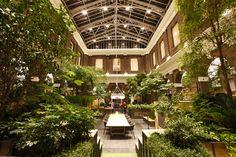 De beplanting van de Bibliotheek Schiedam in de Korenbeurs heeft de titel 'Beste interieurbeplanting van het jaar' gewonnen. Het project is gerealiseerd door Zuidkoop Natural Projects. De prijs wer…