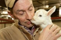 Researchers find way to produce spider silk with goat milk | BERKSCOUNTRY #goat #goat_milk