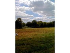 Super 3+/- acre tract just south of Historic Clifton and the beautiful Tennessee River! Nice open tract with an excellent building site. City water & electricity available. Creek at back of property in Clifton TN
