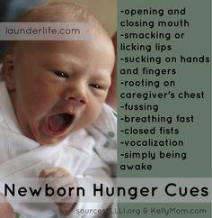 Newborn Hunger Cues