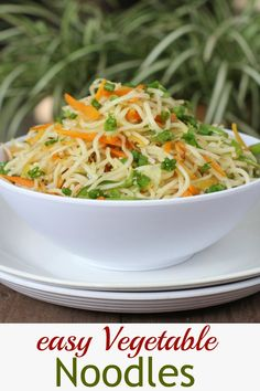 Restaurant style Indian Chinese Vegetable Noodles. Super easy to make and delicious! www.sailusfood.com