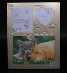 114 Best I Love Cat Images I Love Cats Picture Frame Picture Frames