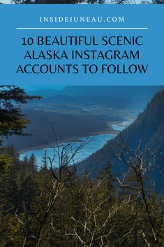 10 outstanding scenic Alaska instagrammers to follow. See more at www.insidealaska.com Alaska Cruise, Alaska Travel, Instagram Accounts To Follow, Instagram Feed, Juneau Alaska, Wildlife Conservation, Whale Watching, Travel Planner, Explore