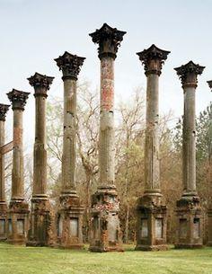 Ruins of Windsor plantation, MS.