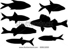 Fish Outline Stock Photos, Images, & Pictures | Shutterstock