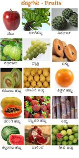 Posting a wallpaper on fruits . Worksheets For Kids, Math Worksheets, Fruits Name In English, Kannada Language, Fruit Names, Tv Wall Decor, Alphabet Cards, Animal Crafts For Kids, Kids Learning