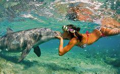 Girl Kissing Dolphin off the Coast of Hawaii