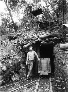 hard workin' miners