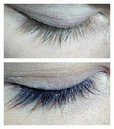 Eyelash tinting with Eyelash & Brow Dye/Tint Kit! Permanent Makeup, Eyelashes, Eyebrows, Eyeliner, Jacksonville Beach Fl, Eyelash Tinting, Mascara Tips, Hair Studio