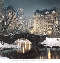 Twilight in Central Park Art Print at AllPosters.com