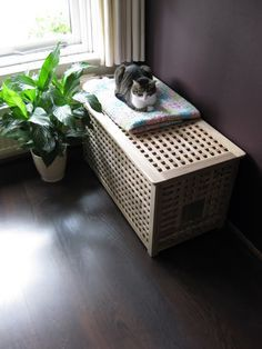 Dit ikea opbergmeubel wordt een prima kattenbakverberger door er aan de zijkant een ingang in te - Idee gang ingang ...