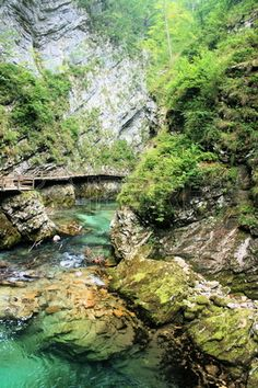 wonderful colors of the Sava river in Vintgar Gorge near Bled, Slovenia