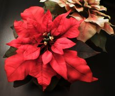 Poinsettia Red and Rose - Cold Porcelain