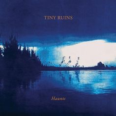 Tiny Ruins is the folk project of Auckland musician & songwriter Hollie Fullbrook.