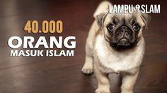 40.000 Orang Masuk Islam Melihat Tingkah Anjing Ini | Kisah Nyata