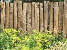 Fence of round chestnut poles - Bradley Keave Country Fences, Rustic Fence, Outdoor Life, Outdoor Rooms, Fence Gate Design, Privacy Landscaping, Backyard Furniture, Green Garden, Back Gardens