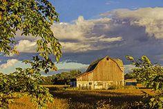 - Michigan Barn at Sunset  by Tom Clark