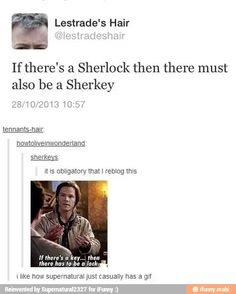 can i just comment on Lestrade's Hair...