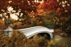 Bow Bridge by Jessica Jenney