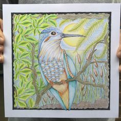 Claritystamp kingfisher colouring page. Coloured by Hubby.