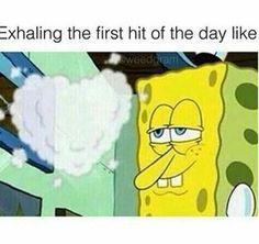 Sponge bob stonex