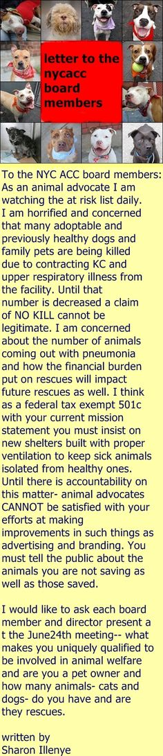 A letter to the NYCACC board members, written by Shron Illeneye