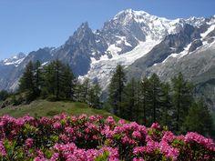 Monte Bianco, Alps, Italy