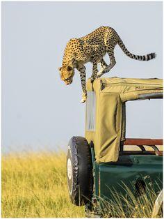 Getting Off...... Kenya, Africa