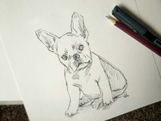 French Bulldog Fineliner Drawing by LocketDesign on Etsy