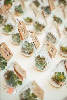 Send guest to their seats with a long lasting memento of the day.<br />  Image provided by Organic Elements<br />Photography by Orange Turtle Photography