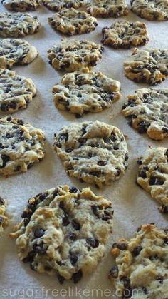 Sugar Free Low Carb/Paleo Chocolate Chip Cookies - Only 76 calories and carbs per cookie? Making Paleo Enjoyable Sugar Free Desserts, Sugar Free Recipes, Low Carb Desserts, Low Carb Recipes, Dessert Recipes, Health Desserts, Clean Recipes, Diabetic Recipes, Dessert Ideas