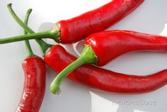 Chilli pepper Photographic Print   Red by NewCreatioNZ on Etsy, $29.00