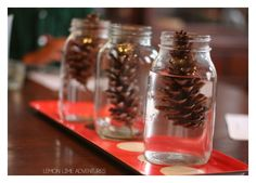 Pine Cone Science Experiment for Kids | Why Do Pinecones Open