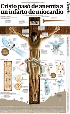 La muerte de Jesucristo y la crucifixión (ver infografías) | Revista La Fuente Bible Prayers, Catholic Prayers, Christian Humor, Christian Life, Bible Study Notebook, Crucifixion Of Jesus, Bible School Crafts, Bible College, Catholic Religion