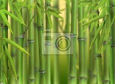 Stock photo of Bamboo sprouts forest 51212044 - image 51212044
