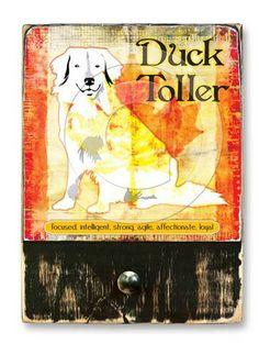#DuckToller  #ruckusdog #ruckusdogproducts