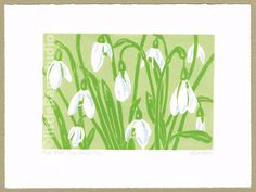 'The first Snowdrops' - Limited edition, hand cut linocut reduction print. Printed on hand press in four colours. Signed, titled and numbered in pencil by the artist. Featured in the March edition of Country Living Magazine. Small edition of just 30 pr. The Artist, Simple Prints, Unique Image, Linocut Prints, Daffodils, Flower Art, Wall Art Prints, Floral Prints, Etsy
