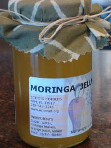 moringa tea – Pick Me Yard Moringa Recipes, Miracle Tree, Cooking Recipes, Healthy Recipes, Healthy Food, Water Bath Canning, Freeze Drying, Superfood, Sugar Free