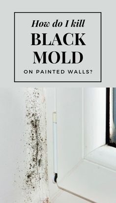 Since mold loves damp, dark and isolated areas, the bathroom seems to offer the proper conditions fo Kill Black Mold, Clean Black Mold, Remove Black Mold, Cleaning Mold, House Cleaning Tips, Cleaning Hacks, Cleaning Solutions, Mold Removal Spray, Mold And Mildew Remover