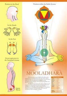 svadhisthana chakra - Google'da Ara: