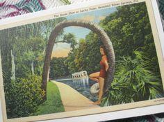 Vintage Florida 1940s linen postcard  The by 3floridagirls on Etsy, $10.00
