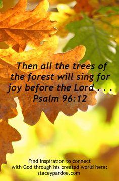 God has much to teach us through his created world