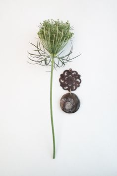 STUDIO NOLDS Sieraden Dandelion, Handmade Jewelry, Studio, Flowers, Plants, Handmade Jewellery, Dandelions, Jewellery Making, Studios
