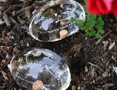 Water From A Stone slowly lets water out into your planter over the course of 3-4 days.