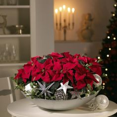 """Am Dezember ist """"Poinsettia Day"""" Christmas Flower Arrangements, Christmas Flowers, Christmas Centerpieces, Christmas Colors, Christmas And New Year, Christmas Themes, Wedding Centerpieces, Floral Arrangements, Christmas Holidays"""