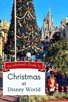Start planning now for your best Christmas ever! Disney World's holiday celebration begins in November and runs all the way through New Year's Day. Learn what to expect and why you should visit Disney World during the Christmas season, plus load of tips to make your vacation extra special. Read now at GoInformed.net/wdwxmas #disneyworld #disneychristmas #christmas Disney World Hotels, Walt Disney World Vacations, Disney World Resorts, Disney Travel, Disney On A Budget, Disney World Planning, Disney World Christmas, Disney Holidays, Disney World Information