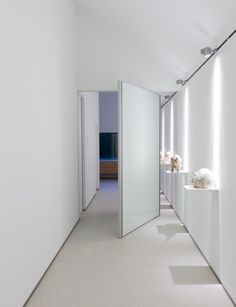 modern glass pivoting door with offset axis