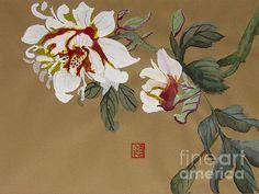 Peonies Chinese Watercolor Art Print By Merton Allen